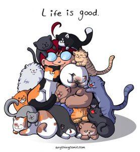 la vie est belle 278x300 - La vie est belle